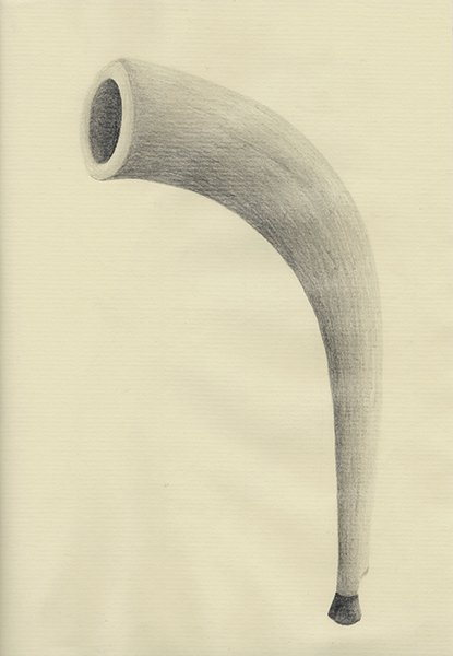 HORN, 2016, 21 x 14.8 cm, pencil on paper